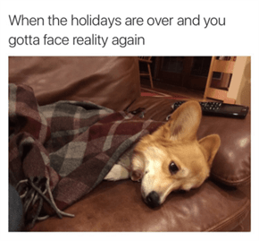 Back To Reality