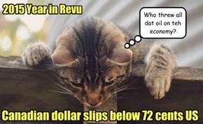 2015 Year in Revu