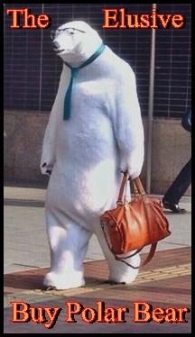 An Actual Buy Polar Bear!