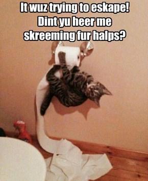 I heard nothing!