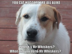 "YOU CAT HUGGERS ARE ALL ALIKE  ""Where's Mr Whiskers?                                                                        What did you do to Mr Whiskers?"""