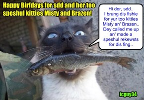 Happy Birfdays for cheezfrend sdd! I hopes yu hab a wunderful Birfday wiff lots ob tasty cakes and ice cweems.. Sabe som ob dat banilla ice cweems for me.. aifinkso