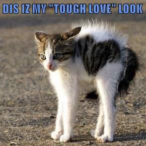 "DIS IZ MY ""TOUGH LOVE"" LOOK"