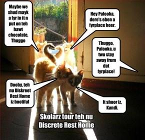 The New Discrete Rest Home