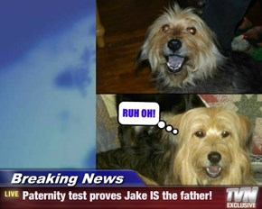 Breaking News - Paternity test proves Jake IS the father!