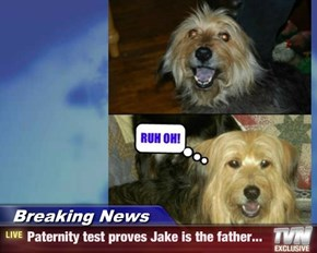 Breaking News - Paternity test proves Jake is the father...