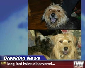 Breaking News - long lost twins discovered...