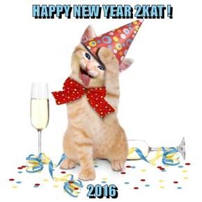 HAPPY NEW YEAR 2KAT !  2016