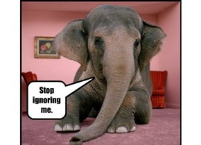 Stop ignoring me.