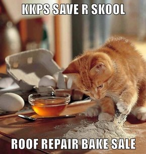KKPS SAVE R SKOOL  ROOF REPAIR BAKE SALE