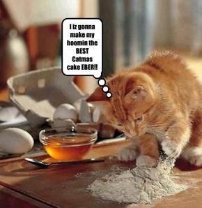 I iz gonna make my hoomin the BEST Catmas cake EBER!!