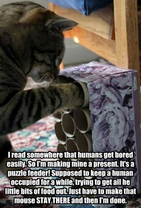 I read somewhere that humans get bored easily. So I'm making mine a present. It's a puzzle feeder! Supposed to keep a human occupied for a while, trying to get all he little bits of food out. Just have to make that mouse STAY THERE and then I'm done.