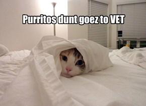 Yu must be mistaking me fur da cat.