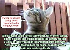 Pweez pray for allcatsloved's father