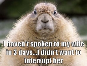 I haven't spoken to my wife in 3 days...I didn't want to interrupt her
