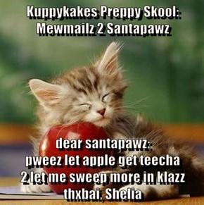 Kuppykakes Preppy Skool: Mewmailz 2 Santapawz  dear santapawz:                                                      pweez let apple get teecha                                  2 let me sweep more in klazz
