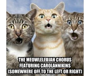 THE MEOWLELEUJAH CHORUS FEATURING CAROLANNIKINS (SOMEWHERE OFF TO THE LEFT OR RIGHT)