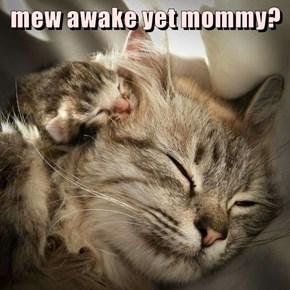 mew awake yet mommy?