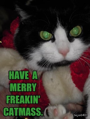 HAVE  A  MERRY  FREAKIN'  CATMASS.
