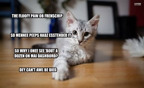 THE FLOOFY PAW OB FRENSCHIP