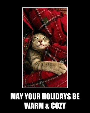 MAY YOUR HOLIDAYS BE WARM & COZY