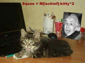 Squee = M[ischief]-kitty^2