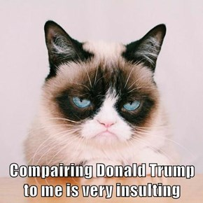 Compairing Donald Trump to me is very insulting