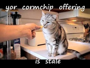yor  cormchip  offering    is  stale