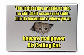 Ceiling Cat Sooper Herow