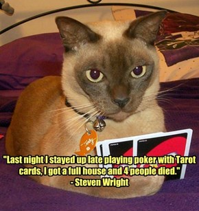 """""""Last night I stayed up late playing poker with Tarot cards, I got a full house and 4 people died."""" - Steven Wright"""