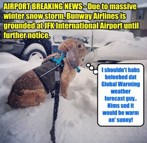 Bunway Airlines learns that some weather forecasts are none too reliable..