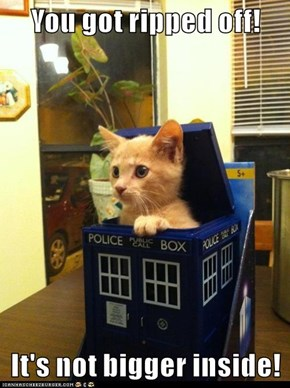 I Still Fits in Faulty Tardis