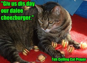 """""""Giv us dis day our dalee cheezburger."""""""