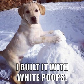 I BUILT IT WITH                           WHITE POOPS!