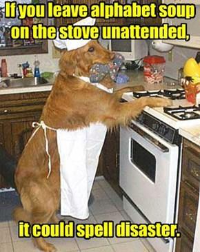 Dad Joke Dog Gives Cooking Advice