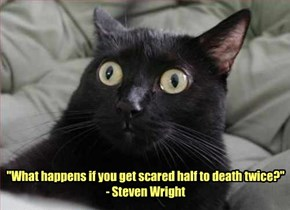 """""""What happens if you get scared half to death twice?"""" - Steven Wright"""
