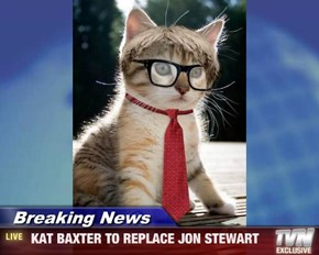 Breaking News -  KAT BAXTER TO REPLACE JON STEWART