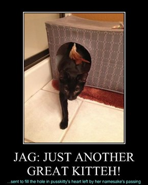 JAG: JUST ANOTHER GREAT KITTEH!