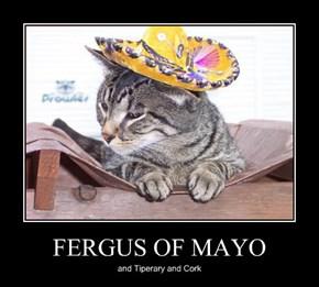 FERGUS OF MAYO