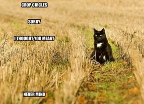 CROP CIRCLES   SORRY   I THOUGHT YOU MEANT          NEVER MIND