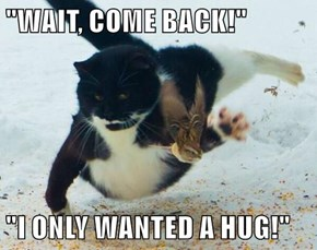 """""""WAIT, COME BACK!""""  """"I ONLY WANTED A HUG!"""""""
