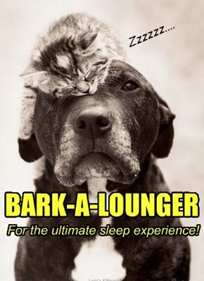 BARK-A-LOUNGER For the ultimate sleep experience!