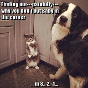 Finding out---painfully---                             why you don't put Baby in                       the corner  ... in 3...2...1...