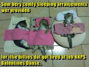 Som bery comfy sleeping arranjements wer provided  for ittie bitties dat got tired at teh KKPS Balentines Danse..