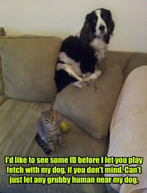 I'd like to see some ID before I let you play fetch with my dog, if you don't mind. Can't just let any grubby human near my dog.