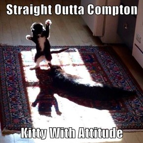 Straight Outta Compton  Kitty With Attitude