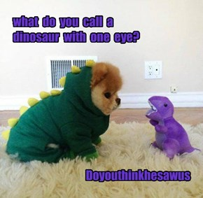 what  do  you  call  a  dinosaur  with  one  eye?