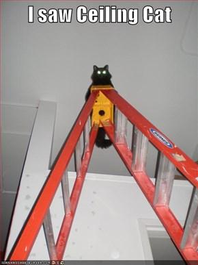 I saw Ceiling Cat