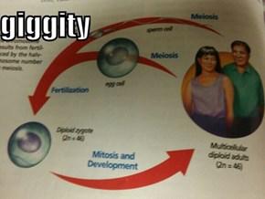 Those dirty biology textbooks