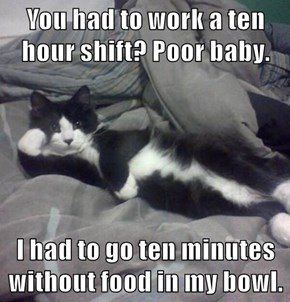 You had to work a ten hour shift? Poor baby.  I had to go ten minutes without food in my bowl.